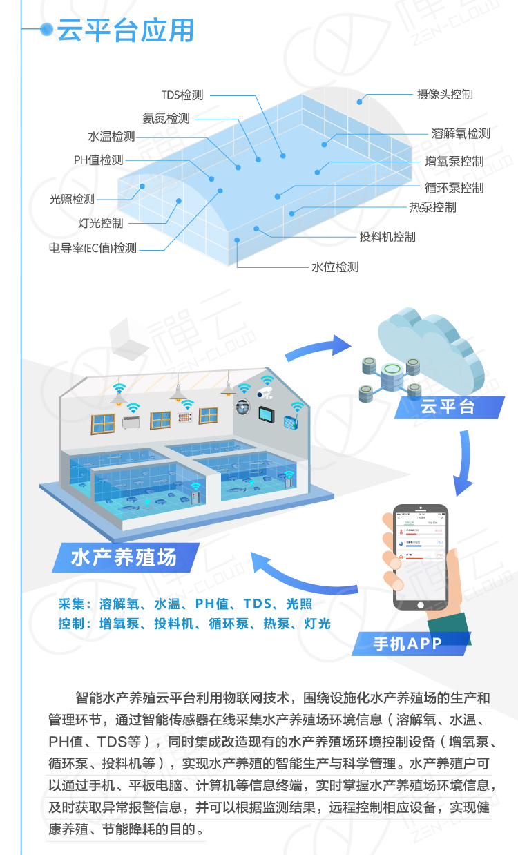 智能水产养殖系统