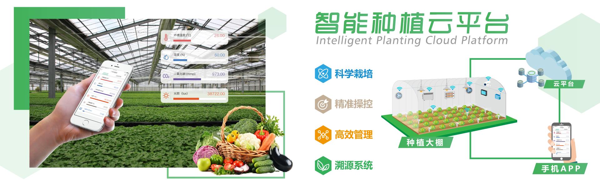 智能农业种植方案